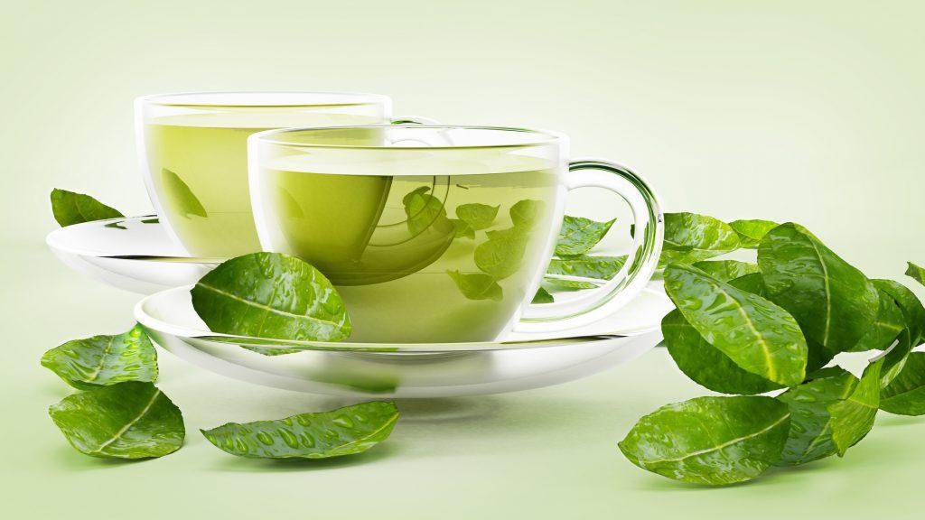 Grønn te - Camellia Sinensis